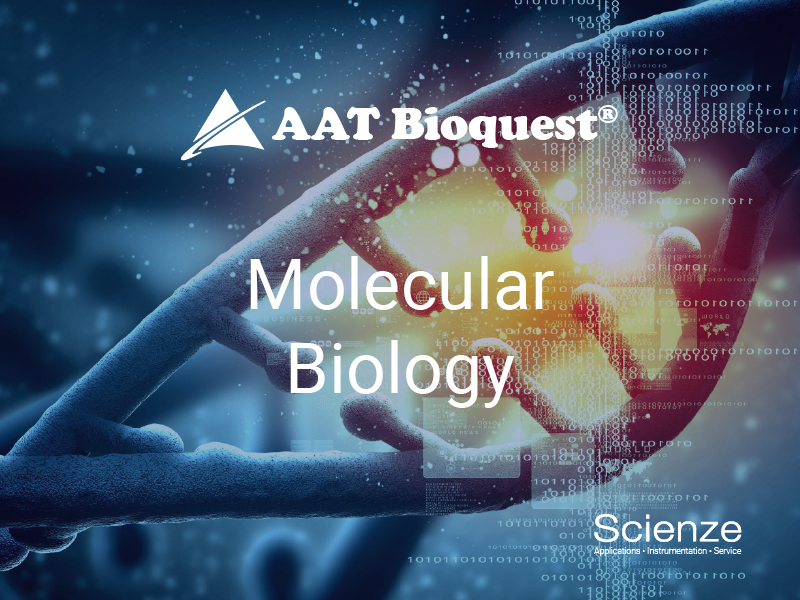 MolecularBiology800_600