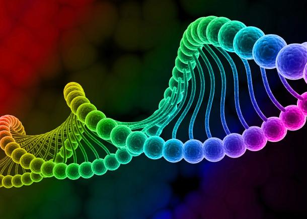 oligonucleotidelabelling435