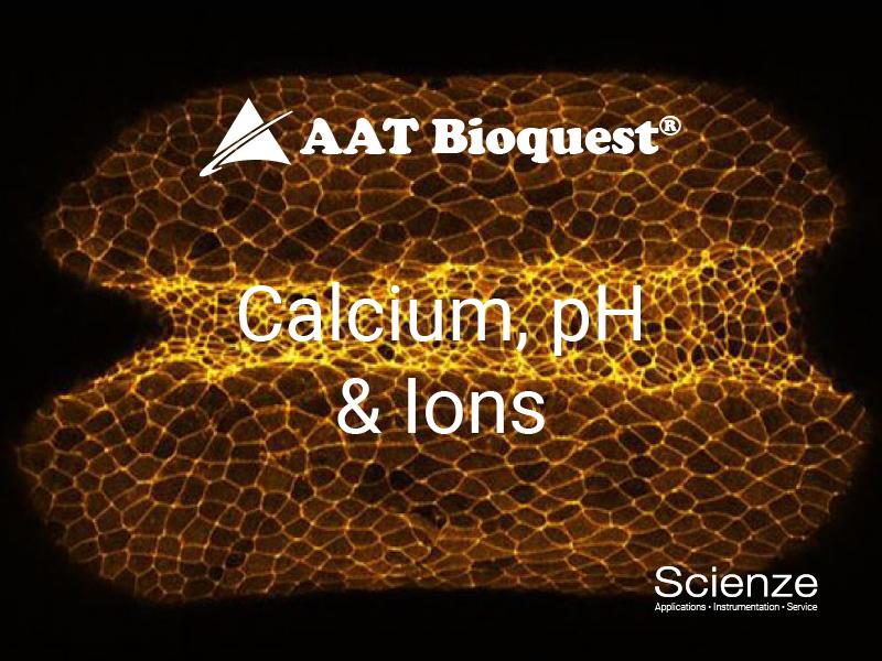 CalciumpHIons800_600A