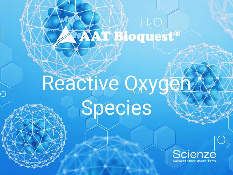 ReactiveOxygenSpecies800_600